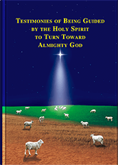 Testimonies of Being Guided by the Holy Spirit to Turn Toward Almighty God